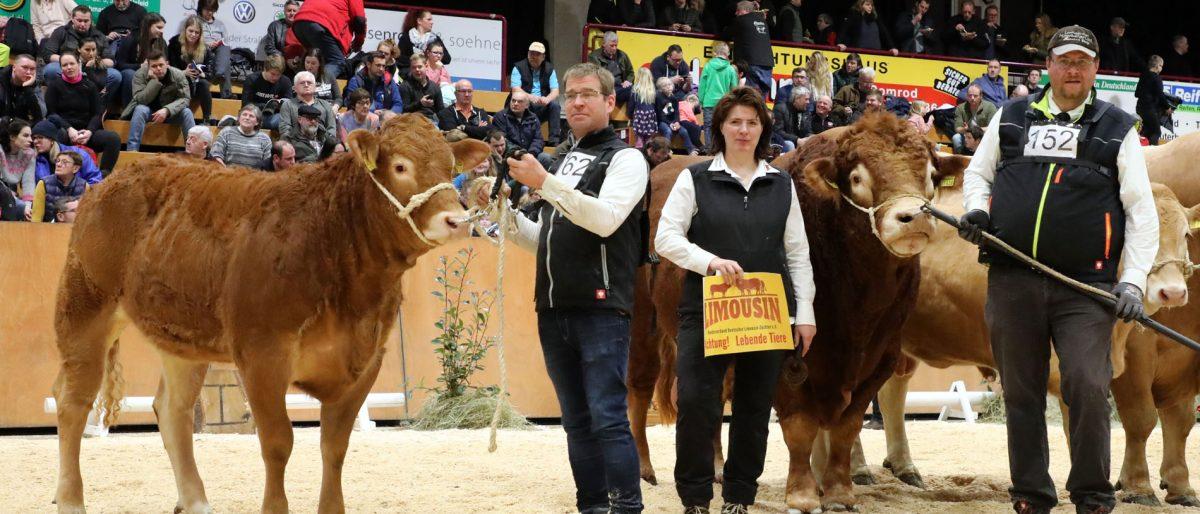 Permalink auf:Siegerbulle in Alsfeld
